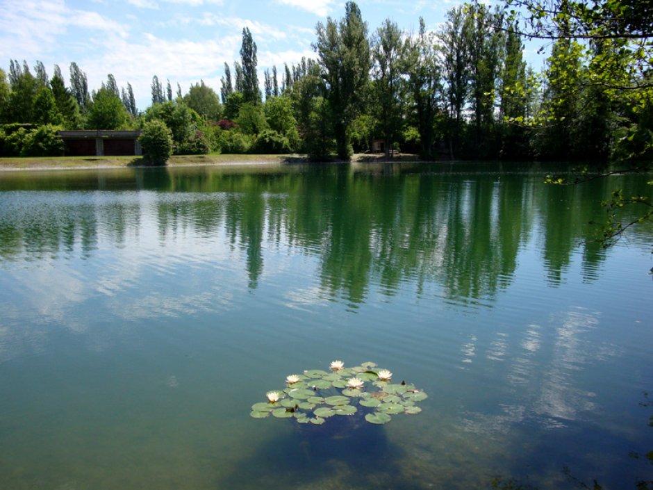 lac du quartier des maraichers